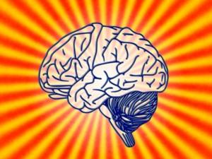 productive brain