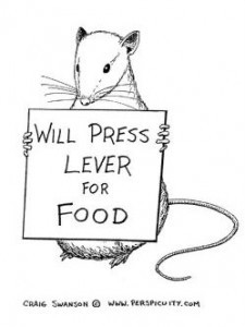 "Black and white sketch of a rat holding a sign reading ""Will press lever for food"""